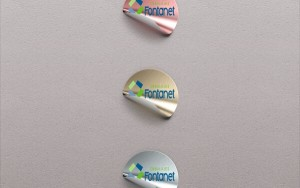 STICKERS FONTANET 2