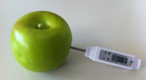 termometro-medicion